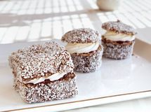 Australier Lamingtons Stockbild