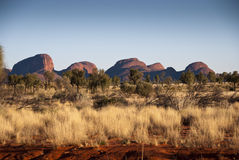 australier outback Royaltyfri Fotografi