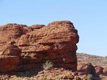 Australiern gör till kung kanjonen Arkivfoto