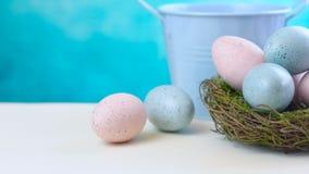 Australiern mjölkar ägget för den chokladBilby påsken med ägg i rede