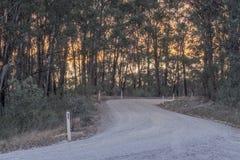 Australijczyk odpieczętowana wiejska droga podczas zmierzchu Obraz Royalty Free