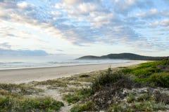 Australijczyk plażowa linia brzegowa przy 'Delikatnym Nobby' obrazy royalty free