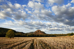 australijczyka krajobrazu Obrazy Stock