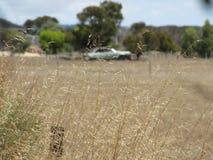 australijczyka krajobrazu Fotografia Stock