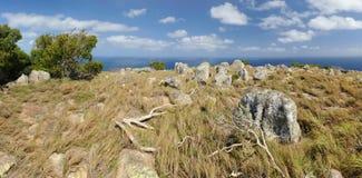 australijczyka krajobrazu Jaszczurki wyspa Wielka bariery rafa, Queensland, Australia fotografia royalty free
