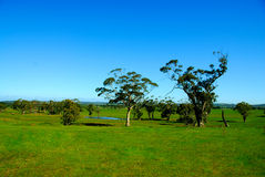 australijska piękna wieś Zdjęcie Stock