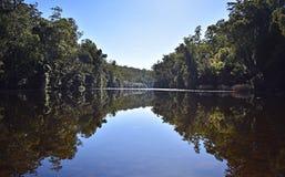 Australijska rzeka Zdjęcia Stock