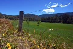 Australijska wieś Obraz Stock