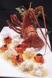 Australijski homar Obrazy Royalty Free