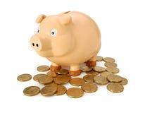 australijski pieniądze banku świnka Zdjęcia Stock