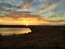 australijski słońca Fotografia Royalty Free