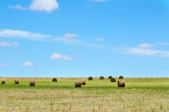Australijski wiejski pole krajobraz z haystacks Obrazy Royalty Free
