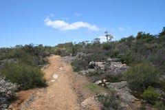 Australisch binnenland Stock Foto's