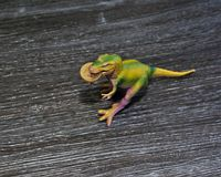 Australisch dollarmuntstuk in dinosaurus` s mond Royalty-vrije Stock Fotografie