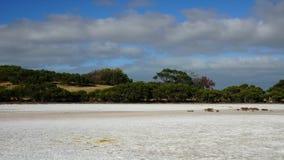 Australisch landschap stock footage