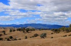 Australisch Landschap Stock Foto