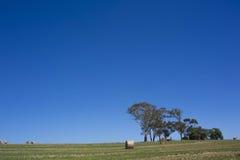 Australisch platteland Royalty-vrije Stock Afbeelding