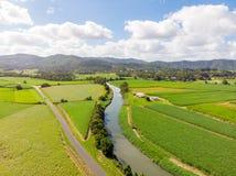 Australisch Suikerrietgebieden en Landschap Stock Afbeelding