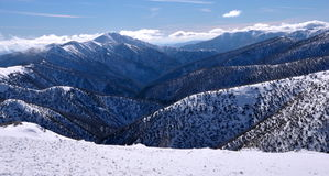 Australische Alpen lizenzfreies stockfoto