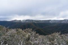 Australische Alpen, SneeuwdieBergen met sneeuw worden behandeld stock afbeeldingen