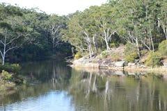 Australische Busch Einstellung Lizenzfreies Stockbild