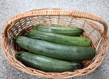 Australische grüne Zucchini Lizenzfreie Stockfotos