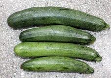 Australische grüne Zucchini Stockfotos