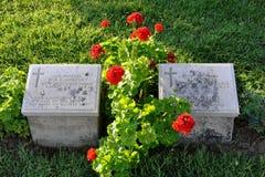 Australische Graven en Bloemen in Anzac Cove stock foto's