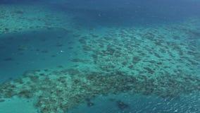 Australische grote barrièrerifantenne van helikopter stock footage