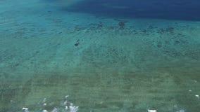 Australische grote barrièrerifantenne van helikopter stock video