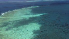 Australische grote barrièrerifantenne van helikopterschaduwen stock footage