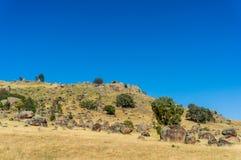 Australische Hinterlandlandschaft am sonnigen Tag Lizenzfreies Stockbild