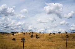 Australische ländliche Landschaft in der Dürre Stockbild