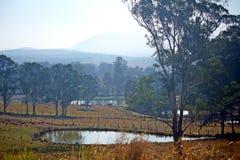Australische Landschaft mit Verdammungen Lizenzfreies Stockbild