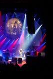 Australische Pink Floyd Lizenzfreie Stockfotografie