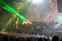 Australische Pink Floyd Lizenzfreies Stockfoto