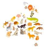 Australische Säugetierkartenschattenbilder auf weißer Hintergrundvektorillustration Bunte Karikaturillustration für Kinder, k vektor abbildung