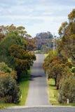 Australische Straßenlandschaft mit Bäumen, einem natürlichen blauen Himmel und schönen Farben in Victoria, Australien Stockfoto