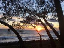 Australische strandzonsopgang royalty-vrije stock afbeeldingen