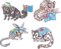 Australische Tiere Stockbilder