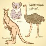 Australische Tiere der Skizze in der Weinleseart Lizenzfreie Stockfotografie