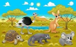 Australische Tiere in einer Naturlandschaft Lizenzfreies Stockfoto
