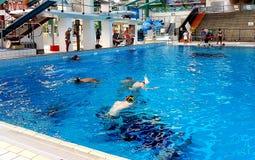 Australische Unterwasserrugby-Angehörige 2018 Lizenzfreie Stockfotos