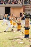 Australische wooductters bei königlichen Adelaide Show, im September 2014 Lizenzfreies Stockfoto