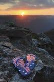 Australische Zapfen im Sonnenuntergang Stockfotos