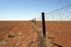 Australischer Hinterland Dingozaun Stockfotos