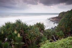 Australischer Meerblick an der Dämmerung mit gebürtigen Bäumen Stockfotografie
