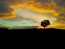 Australischer Sonnenuntergang stockbild