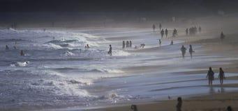 Australischer Strand am Nachmittag stock video footage