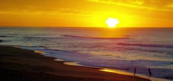 Australischer Strand am Sonnenaufgang stock video footage